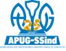 Logomarca Comemorativa