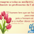 8 de Março – Dia de União e Luta a favor da mulher contra todo preconceito e violência