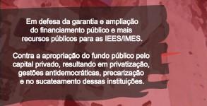 mobilizaÇAO ANDES