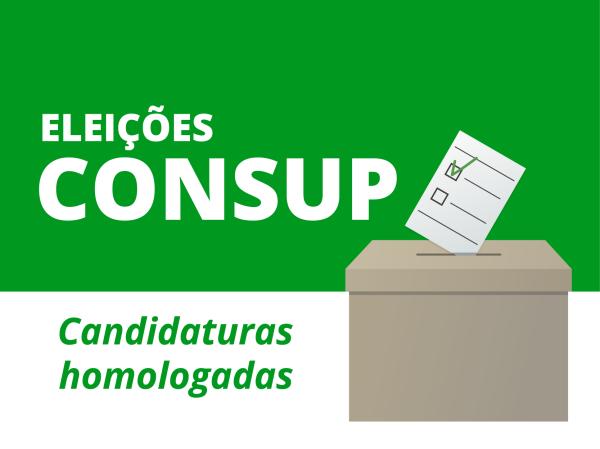 Comissão Eleitoral homologa inscrições de docentes para eleição de representação junto ao Consup